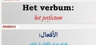 تصريف الأفعال في اللغة الهولندية: الماضي