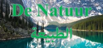 تعلم الهولندي: مفردات متعلقة بالطبيعة