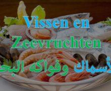 أسماء الأسماك وفواكه البحر بالهولندي